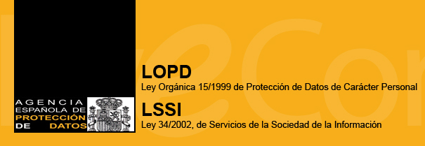 Adaptar mi Página Web o Tienda Online. (LOPD y LSSI).