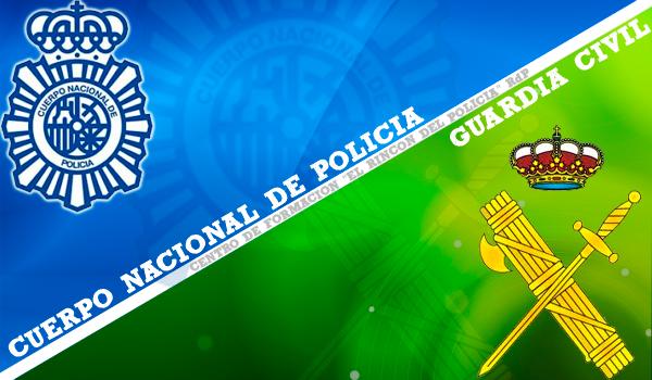 Delitos en Redes Sociales. Ciberpolicía Española.