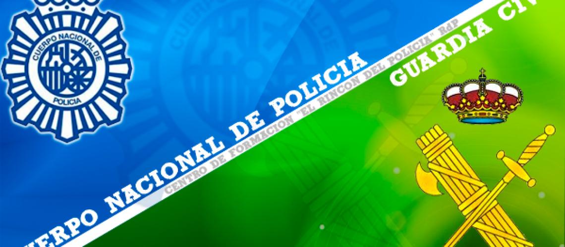 Ciberpolicía Española